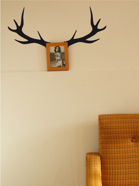 Image Bois De Cerf : bois de cerf de os bichos